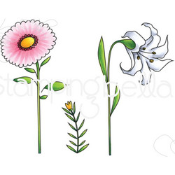 Stamping Bella kumileimasin Side To Side Floral
