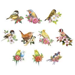 Valmiiksi leikattuja 3D kuvia, Budgies & Birds