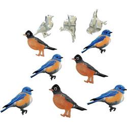 Haaraniitit Blue Bird & Robin, 12 kpl