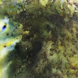 Infusions Dye Stain -värijauhe, sävy Olive Tree