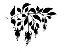 Lavinia Stamps leimasin Fuchsia