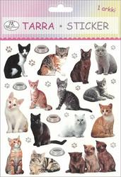 Tarra-arkki Kissat