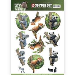 Amy Design Wild Animals 2 3D-kuvat Bears