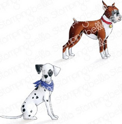 Stamping Bella Boxer and Dalmation -leimasinsetti