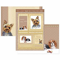 Hunkydory Dog's Life Luxury Topper -pakkaus, King Charles Spaniel & Yorkshire terrier