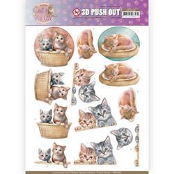 Amy Design Cat's World 3D-kuvat Kittens