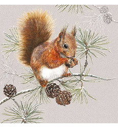 Servetti Squirrel In Winter, 20 kpl