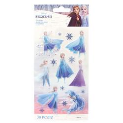 Disney tarra-arkit Frozen, Elsa