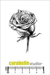 Carabelle Studio Rose -leimasin