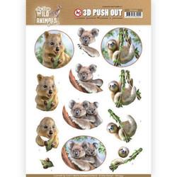 Amy Design Wild Animals Outback 3D-kuvat Koala