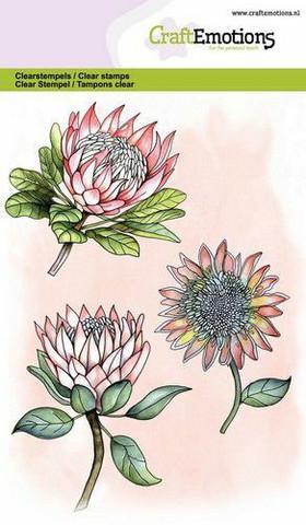 CraftEmotions leimasinsetti Protea