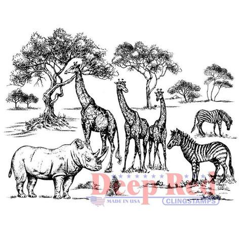 Deep Red leimasin Safari