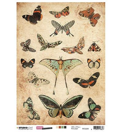Studio Light riisipaperi Just Lou Botanical Collection 08