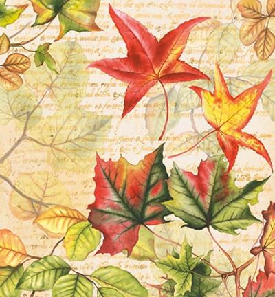 Servetti Autumn Time, 20 kpl
