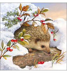Servetti Hedgehog in Snow, 20 kpl