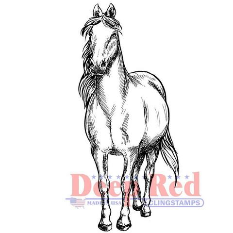 Deep Red leimasin Majestic Horse