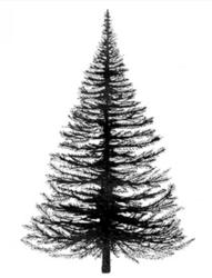 Lavinia Stamps leimasin Fir Tree