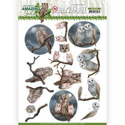 Amy Design Amazing Owls 3D-kuvat Night Owls