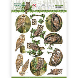 Amy Design Amazing Owls 3D-kuvat Forest Owls