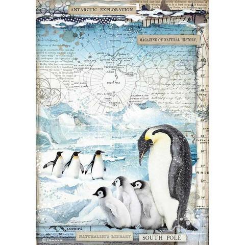Stamperia riisipaperi Penguins