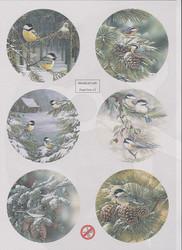World of Craft korttikuvat 13, helmiäispaperi, leikattu