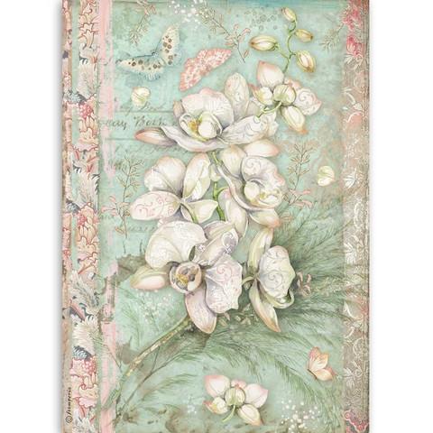 Stamperia riisipaperi White Orchid