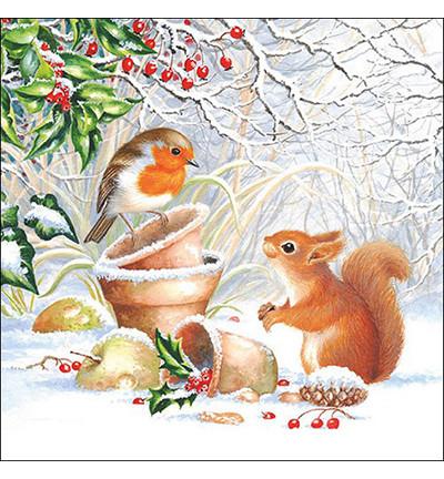 Servetti Winter Picture 20 kpl