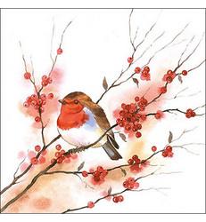 Servetti Birdy Robin, 20 kpl