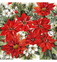 Servetti Poinsettia All Over, 20 kpl