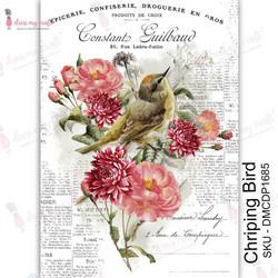 Dress My Craft Transfer Me -arkki, Chirping Bird