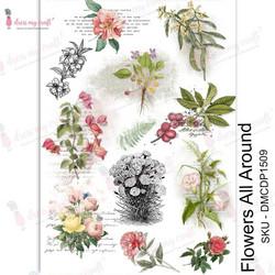 Dress My Craft Transfer Me -arkki, Flowers All Around