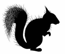 Lavinia Stamps leimasin Red Squirrel