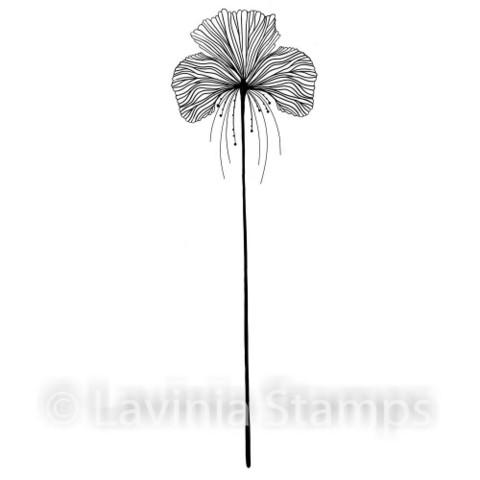 Lavinia Stamps leimasin Single Fairy Orchid