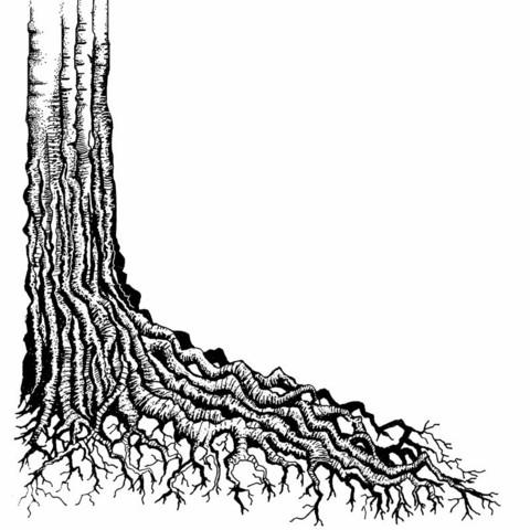 Lavinia Stamps leimasin Tree Root