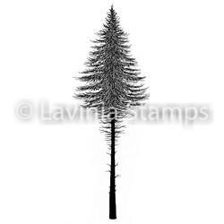 Lavinia Stamps leimasin Fairy Fir Tree 2