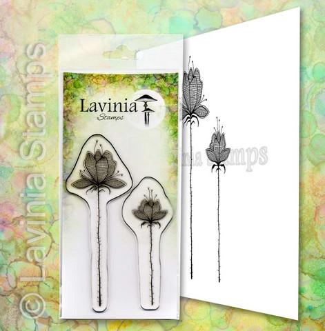 Lavinia Stamps leimasin Liliums