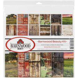 Reminisce Barnwood Beauty -paperipakkaus 12