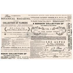 Prima Re-Design Tissue -paperi Floral Text