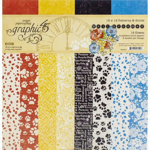 Graphic 45 -paperipakkaus Well Groomed, Patterns & Solids 12