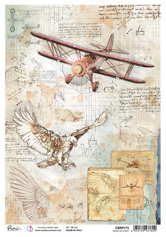 Ciao Bella riisipaperi Study of Flight