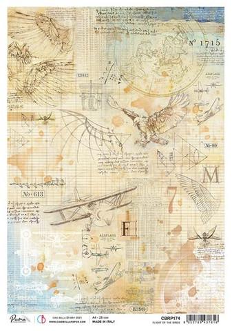 Ciao Bella riisipaperi Flight of the Birds