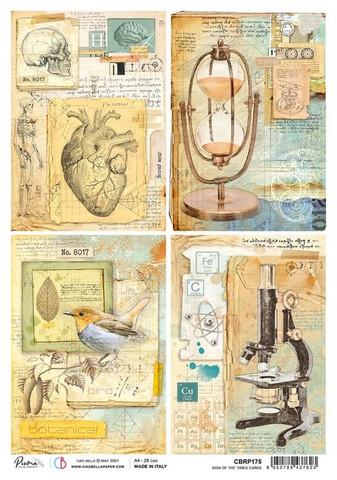 Ciao Bella riisipaperi Cards