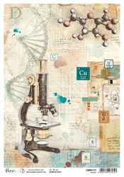 Ciao Bella riisipaperi Science