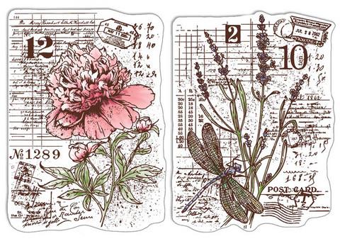 Ciao Bella leimasinsetti Botanical Postcards