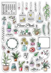 Ciao Bella leimasinsetti Bujo House Plants