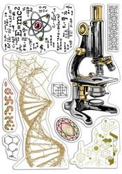Ciao Bella leimasinsetti Science