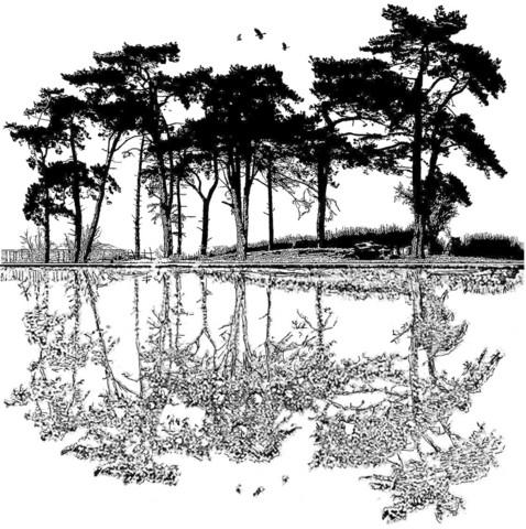 Crafty Individuals leimasin Dawn Reflections