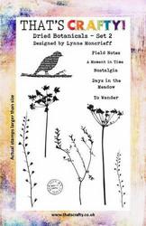 That's Crafty leimasinsetti Dried Botanicals 2