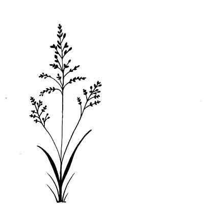 Lavinia Stamps leimasin Field grass