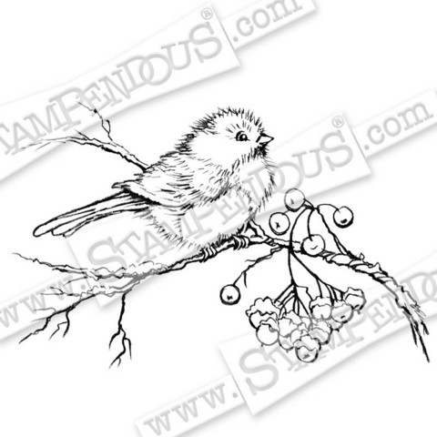 Stampendous leimasin Snow Bird